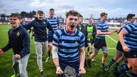 Castleknock hold off spirited Roscrea rally