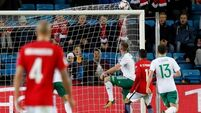 Chris Brunt own goal condemns N. Ireland to Norway defeat