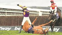 Tommy Lyons: Bumper is again kind to Willie Mullins