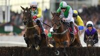 Promising Zero Ten primed for Punchestown