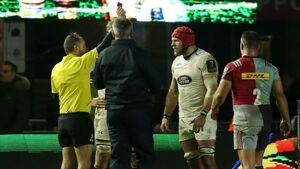 James Haskell could miss Six Nations opener after Champions Cup dismissal