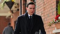 Horsey McHorseface? Joseph O'Brien asks Twitter to name horse