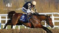 Nichols Canyon and Apple's Jade headline Hatton's Grace Hurdle contenders at Fairyhouse