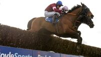 Irish Grand National-winning rider Ger Fox backed to 'learn' from cocaine ban