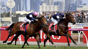 'Irish trainers are world leaders': Racing world reacts to phenomenal Melbourne Cup 1-2-3