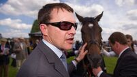 Order of St George flies Ballydoyle flag in Irish At Leger trial at Curragh