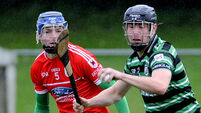 Charleville and Douglas GAA clubs facing €2,500 fines as they are thrown out of Cork Premier U21 Hurling Championship