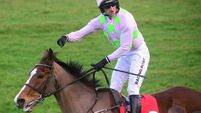 Fabulous Faugheen rolls back the years to beat Samcro at Limerick