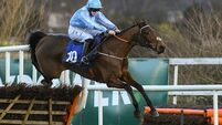 Pick 3: The Cheltenham Festival crackers to look forward to