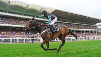 Altior ruled out of Champion Chase defence