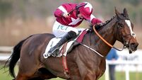 Notebook pens convincing Leopardstown victory as Laurina disappoints