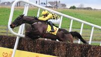 Cheltenham champion Al Boum Photo oozes class on triumphant Tramore return