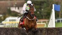 Eight Cheltenham takeaways from the Dublin Racing Festival