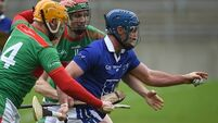 Kieran Shannon: GAA must grasp the nettle to save its hurling hinterlands