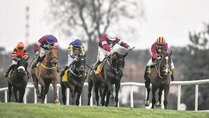 Bookies as confused as punters over Cheltenham Gold Cup