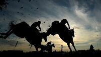 Horse racing to continue in Ireland under more stringent controls