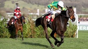 Tiger Roll grounded by heavy track as Easysland produces another Cheltenham shock