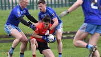 Last-gasp penalty sees UCC through in Sigerson Cup