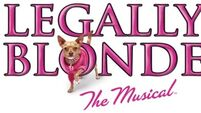 Legally Blonde the Musical is coming to Dublin