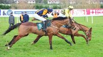 Melon strikes as City Island disappoints at Leopardstown