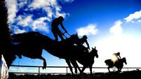 HRI unveils plans for Tipperary all-weather track and €12,500 minimum race purse