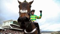 Epatante delivers another Champion Hurdle for record winners