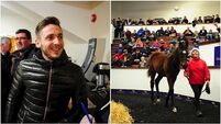 Former Ireland striker Kevin Doyle buys half-brother to winning machine Altior