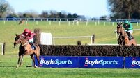 Real Steel too strong for Footpad at Thurles
