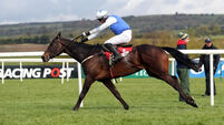 HRI voids registrations of syndicate which owns Cheltenham Gold Cup favourite Kemboy