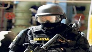 Hutch gang link as pair arrested following midnight raid by armed gardaí in Wexford