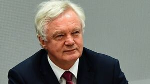 David Davis insists border solution will be found