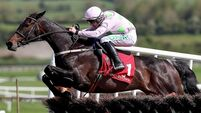 Pat Keane: Please Willie, run Benie Des Dieux in the Stayers'