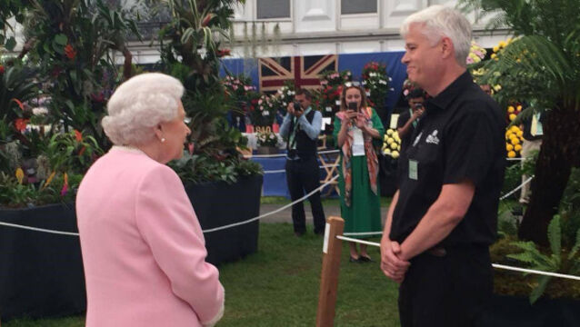 Kerry man wins Silver Gilt Medal at prestigious Chelsea Flower Show
