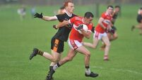 Geaneys lead the charge as Dingle ease past Austin Stacks
