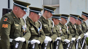 87 Defence Forces members remembered as part of National Day of Commemoration