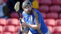 Hurling League wrap: Wicklow take huge step towards Division 2A survival