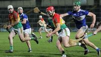 Laois's one-point win keeps them in Division 1 hurling for another year
