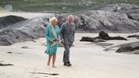 Kerry will reap benefits of royal visit - Brendan Griffin
