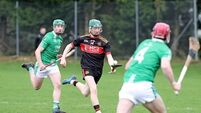 Three players to watch in the Harty Cup final