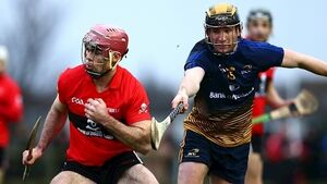 UCC's late point secures champion's spot in Fitzgibbon Cup final