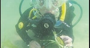 Mr Quinlan has used his grant aid to buy diving gear, including tanks, wetsuits, regulators and masks.