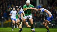 Limerick hurlers see off Waterford in powerful performance
