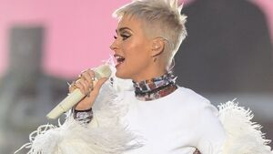 Nun fighting sale of convent to Katy Perry dies after court collapse
