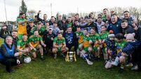Hurling League round-up: Coulter helps Donegal to title over his native Armagh
