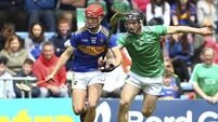 Eight players to watch out for in the Harty Cup quarter-finals