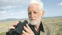 Richard Collins: Primordial horse of the steppe is gone forever