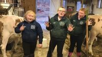 The newest video from the wee women dancing in the cowshed will make your day
