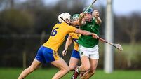 David Reidy hits 1-12 as Limerick set up Munster SHL final date with Cork