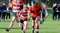 UCC book home quarter-final with victory over Cork IT