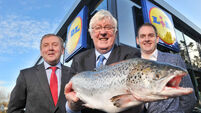 The Monday Interview: Every Lidl helps for Cork fish firm Keohane's Seafood